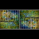 Below The Water Line Tetraptych [grunge] by Damienne Bingham