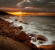 Rocky Shores by Rashid Latiff