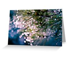after the rain Greeting Card