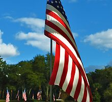 The Red, White and Blue by Bill Colman