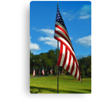 The Red, White and Blue Canvas Print