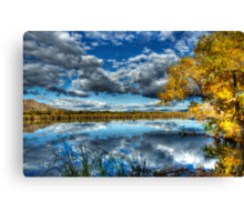 The Mirror Canvas Print