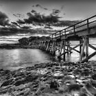 Bare Island - Black and White #1 by Arfan Habib