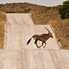 Oryx Antelope by Tweety300