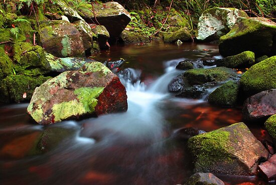 Crystal Creek by Stephen  Nicholson