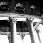 corinthian capitals by david balber