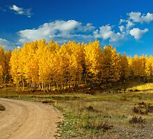 Fall Rural Roads by John  De Bord Photography