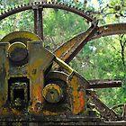 Sugar Mill Gears by joevoz
