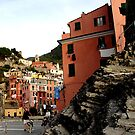 vernazza dogwalker by david balber