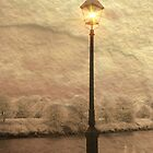 Solitary Lamp 3 by digitalmidge