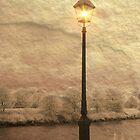 Solitary Lamp 3 by digitalmidge