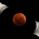 2007 Lunar Eclipse by Phil Hart