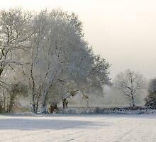 A Winters Scene by Loren Goldenberg-Kosbab