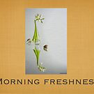 Morning Freshness by Karo  Evans