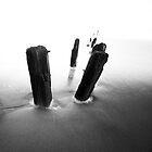 Posts, Sandsend by PaulBradley