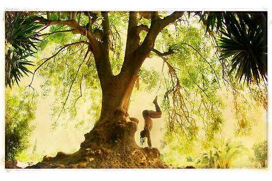 Handstand by the tree by Wari Om  Yoga Photography