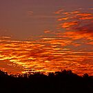 Fire in the Sky by Glenn Bumford