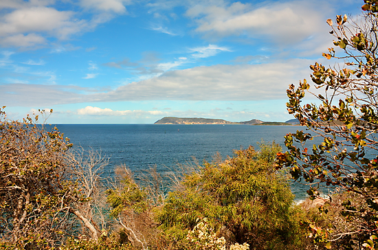 King George Sound, Albany, Western Australia by Elaine Teague