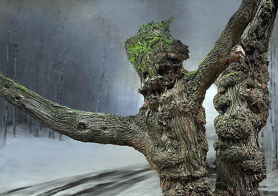 Dusk in the woods by Igor Zenin