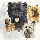 Cairn Terrier /Ghost by BarbBarcikKeith