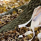 Pointe Shoes and Tree Bark by Lita Medinger