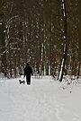 Dog Walking by Gert Lavsen