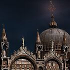 Top of The Mark -Venice by Tom Prendergast