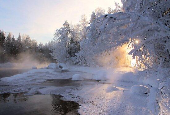 Good Morning Sun by Kari Liimatainen