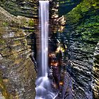 Watkins Glen Waterfalls by Anthony L Sacco