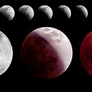 Total Lunar Eclipse, December 2011 by Mike Salway