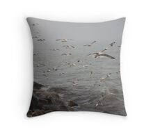 A flock of Seagulls feeding Throw Pillow