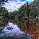 Peaceful Lake in the Warren by BigAndRed