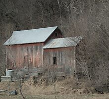 Multipurpose Barn - Near Elkader, Iowa by Deb Fedeler