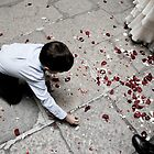 Kid collecting rose petals by alanbuech
