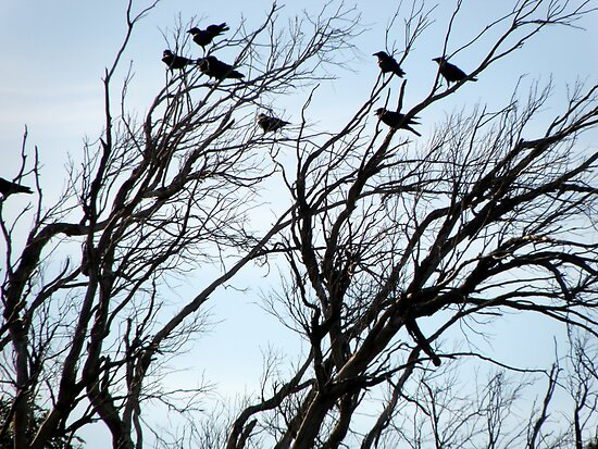The Crow Convention by Rocksygal52