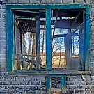 Window onto nature by john forrant