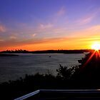 north head manly - lookout by miroslava