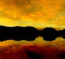 Yellow  (Pano--view large) by Tim Scullion