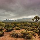 Fog on the Superstitions by Saija  Lehtonen