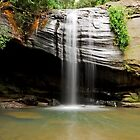 Buderim Falls - Sunshine Coast Qld Australia by Beth  Wode