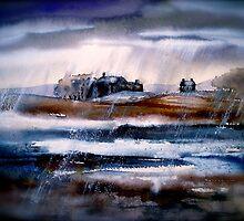 Winter Rain by © Janis Zroback