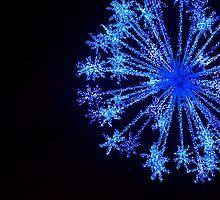 Snowflake by Anca Jugarean