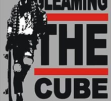 gleaming the cube  by BUB THE ZOMBIE