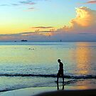 Swimming at sunset by John Dalkin