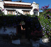 Flowers And Buildings - Flores Y Edificios by Bernhard Matejka