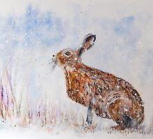Hare (Jack Rabbit)  in a Snow Shower by Denise Hammond-Webb