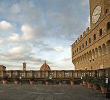 Palazzo Vecchio  Firenze  by Aleksandar Topalovic
