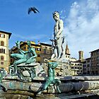 Fountain of Neptune and a Bird by Aleksandar Topalovic