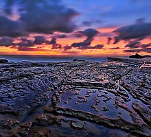Take me higher - Forresters beach by Arfan Habib