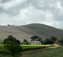 A Small Winery in the Barossa Hills - South Australia by pcbermagui